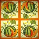 Плоды и цветы тыквы