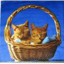 котята в корзинке
