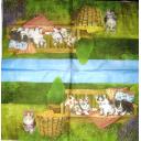 Котята на природе