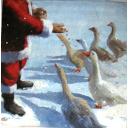 Дед Мороз и гуси