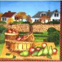 Урожай яблок и груш