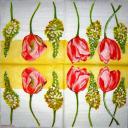 Цветы MOLCA