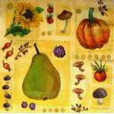 груша, ягоды, грибы и тыква