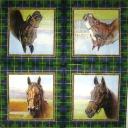 4 коня