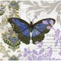 Бабочка и красивый узор
