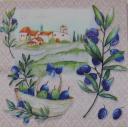 пейзаж и оливки