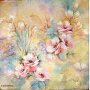 фоновая цветочно-розовая