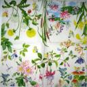 Феечки в цветах