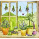 горшки трав на окне