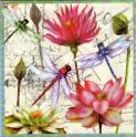 Стрекозы и цветы