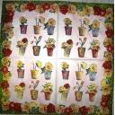 горшочки роз и тюльпанов