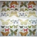 Бабочки с текстом и  нотами