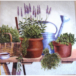 лейка и прованские травы