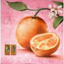 Апельсины на сиреневом фоне