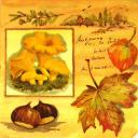 Осенняя пора акварельная