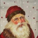 портрет со звездочками