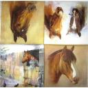 лошадки AVEC