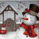 снеговик и кардинал