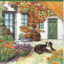 Красивый двор и собака