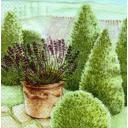 Ландшафтный дизайн с лавандой