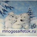 белые мишки с мамой