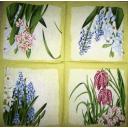 садовые цветочки весной