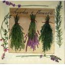 пучки ароматных трав