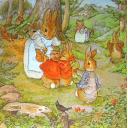 Кролик Петер. Beatrix Potter
