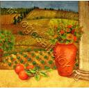 натюрморт в мандаринами