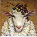 стильная овечка