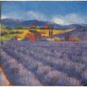 лаванда в Провансе