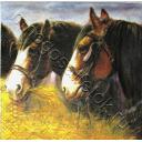 Лошади с сеном