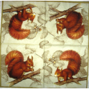 Белочки с орешками