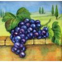 виноградная кисть и пейзаж