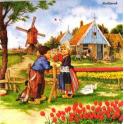 Встреча в Голландии.