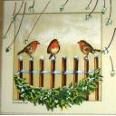 птички и омела