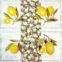 лимоны 25 х 25