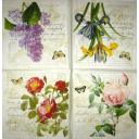 Цветы на письме