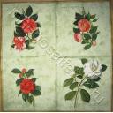 4 розы на  светло салатовом