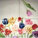 тюльпаны Мона Свард 25 х 25