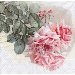 ветка роз  Sagen Vintage
