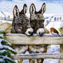 Снегирь и ослики