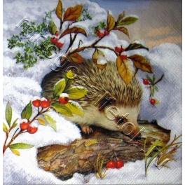 Ёжик зимой