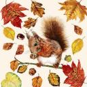 белочка и осень....