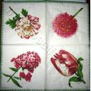 4 цветка, Caspari