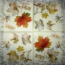 осенние листья с бирками