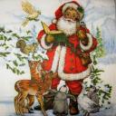 Санта в книгой