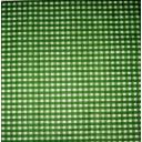 зеленая клеточка