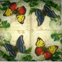 бабочки на гортензии