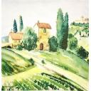 поля в Провансе